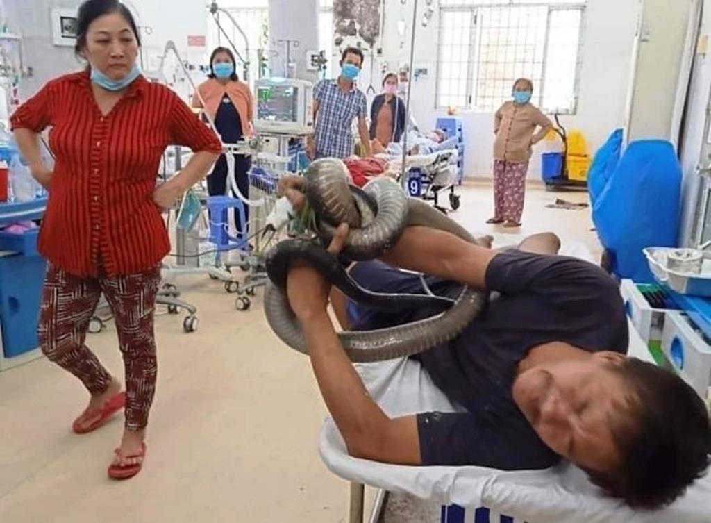 ชายชาวเวียดนามกับงูจงอาง 3 เมตรที่สร้างความหวาดกลัวให้กับผู้พบเห็น