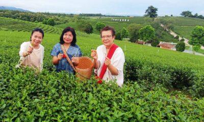 """""""กรมเจรจา"""" มั่นใจเชียงรายชาไทยไปได้ไกลเร่งใช้เอฟทีเอ"""