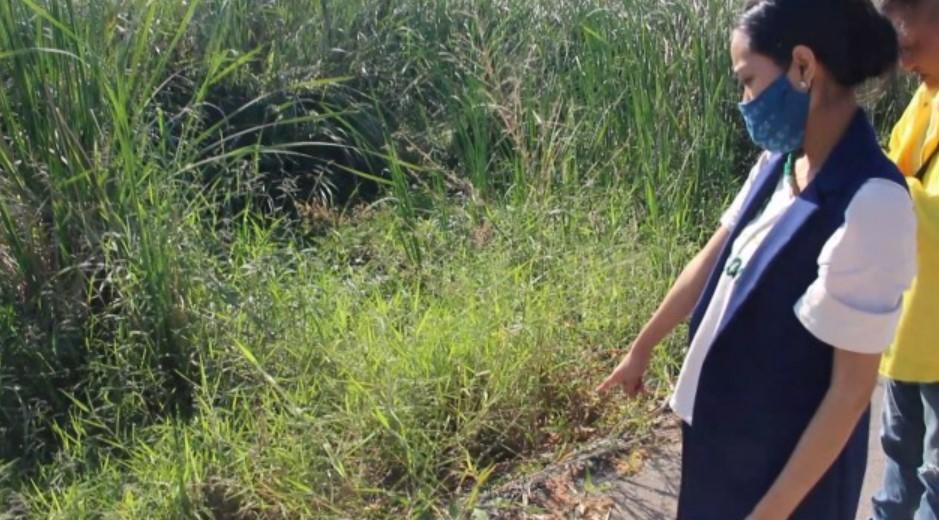 Newborn Baby Abandoned on Roadside in Northeastern Thailand