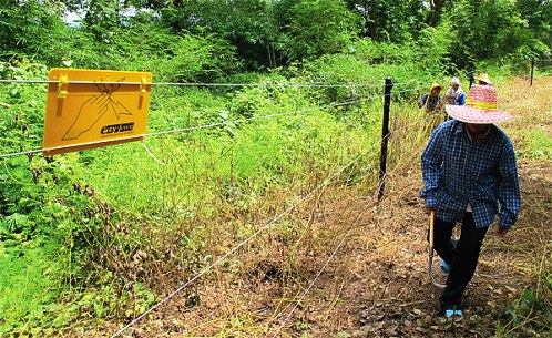 47 Year Old Swede Killed by Electric Fence