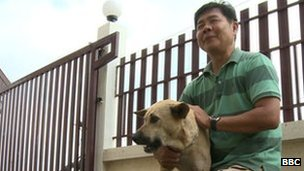 Thailand Dog Owners on High Alert