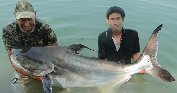 Fishing Teak Tree Lake a 100kg Catfish Tale