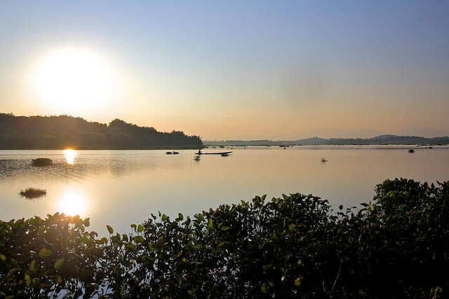 Chiang Saen Lake a Bird Haven