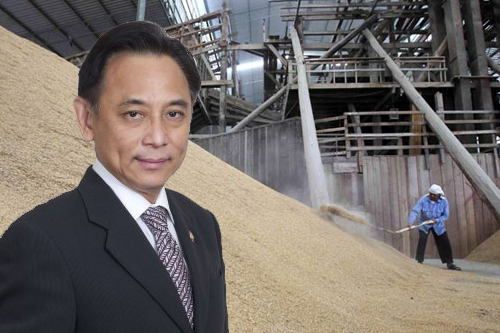 USA Rice Federation Cries Foul on Thailand's Rice Scheme