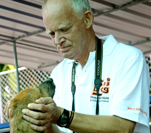 Soi Dog Foundation Saving Dogs from the Dinner Table