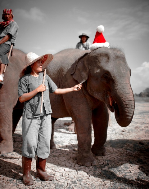 Anantara Golden Triangle Celebrates Traditional Christmas With a Thai Twist