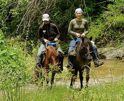 Thai Horse Farm organizes private adventure horseback riding tours in small groups
