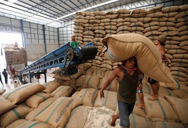 Thailand is set to Sell 500,000 Metric Tons of Rice at a Loss