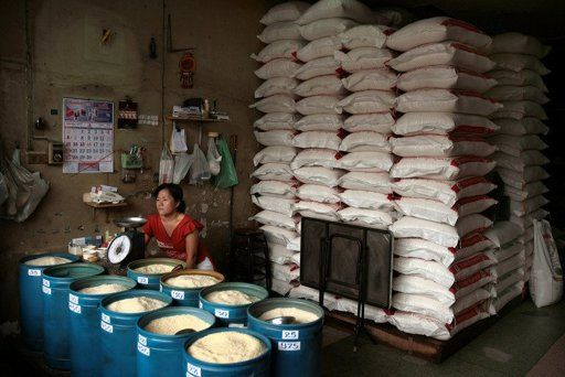 Rice Farmers Protest Against Cuts to Government Rice Scheme