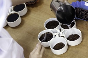 A worker prepares a batch for coffee cupping, where recently roasted robusta beans are tasted for quality control, at the Highlands Coffee processing plant in Ho Chi Minh City, Vietnam.
