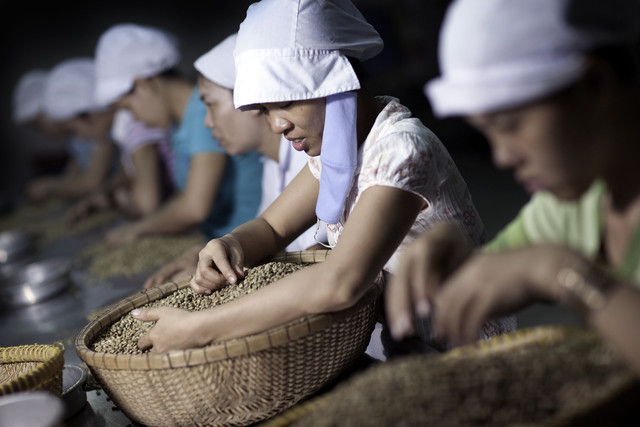 Coffee farmers in Vietnam, the world's biggest producer of the robusta beans used by Nestle SA (NESN) in instant drinks, are limiting sales to seek higher prices amid a drought that may reduce the next harvest.