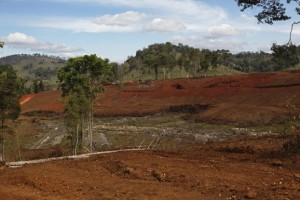 A newly deforested area in Laos