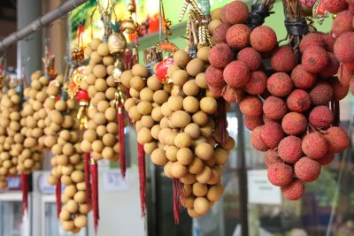 The fluctuating weather, with rain and cold as well as summer storms and hail, was the major factor reducing the longan crop