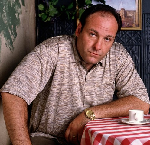 "James Gandolfini, best known for his role as an anxiety-ridden mob boss on HBO's ""The Sopranos,"" died Wednesday while on vacation in Italy. He was 51"