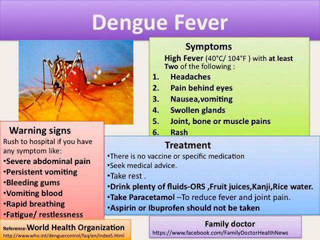 Health Ministry Warns Toursits on Dengue Fever in Northern Provinces