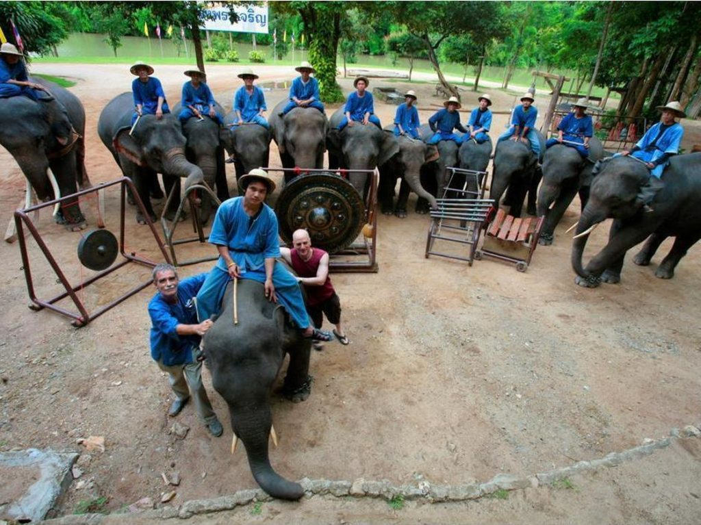 Thai Elephant Orchestra co-founder David Sulzer (bottom center, in red) poses with the animals and their mahouts, or keepers
