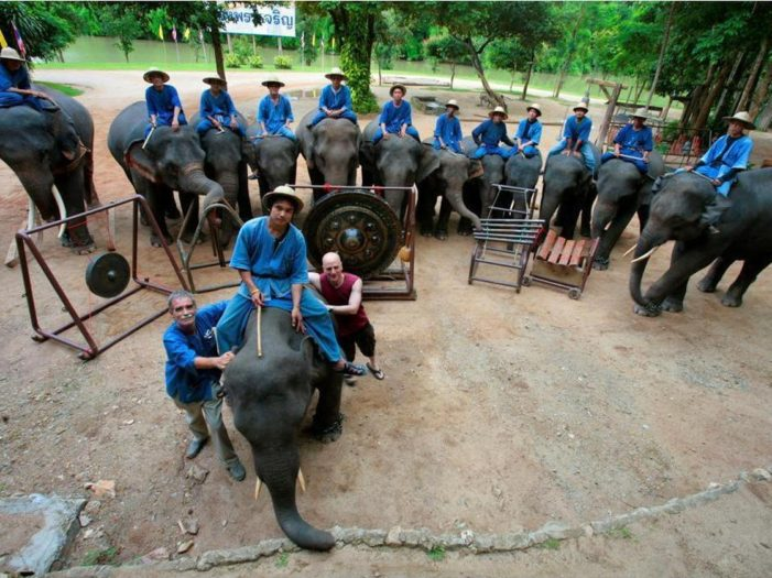 The Thai Elephant Orchestra in Lampang – Video