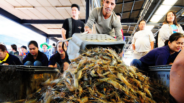 The disease, known as Early Mortality Syndrome (EMS), has for more than two years savaged Asia's shrimp industry, including Thailand, Malaysia, Vietnam and China.