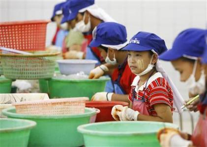 13-year-old girl from Myanmar, peels shrimp at a factory in Samut Sakhon