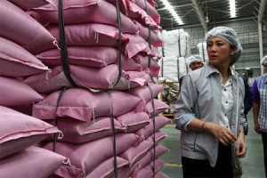 Yingluck Shinawatra,  inspects sacks of milled rice during a tour of the processing plant for Charoen Pokphand Foods Pcl's (CP Foods) Royal Umbrella-brand rice in Nakhon Luang, Ayutthaya province
