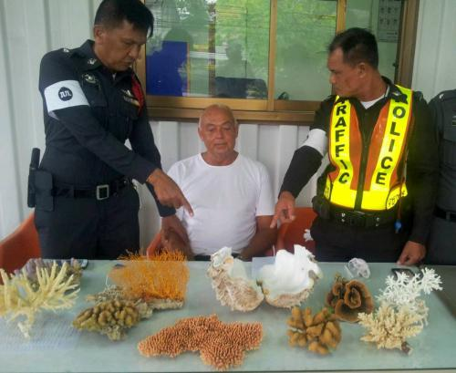 Canadian Arrested for Importing Coral in Thailand