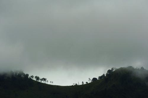Cold and Fog to Continue in Chiang Rai