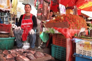 A fish-seller wearing pro 'red shirt' movement apron sits at her stall in a city market in Chiang Mai province