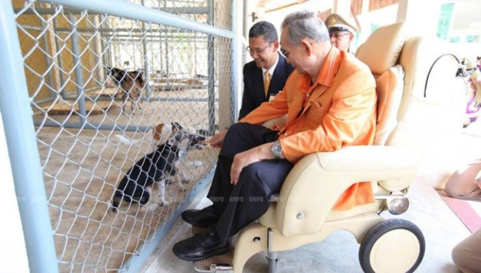 Majesty the King Visits Dog Shelter in Hua Hin