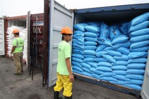 Customs personnel open several container vans filled with smuggled rice from Vietnam