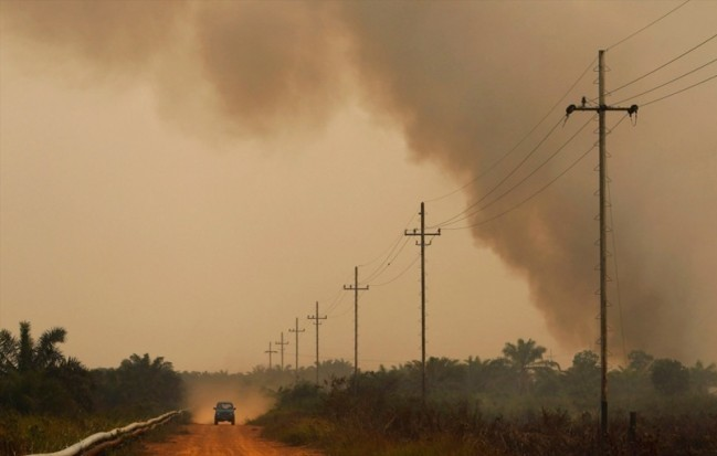 Government Say's It's Working to Help Solve the Haze Problem in the North