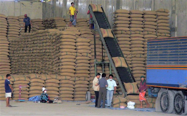 Learning from Thailand's Rice Policy