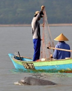 fishermen who use electrical shockers to boost their catches, affecting the river's small Irrawaddy dolphin