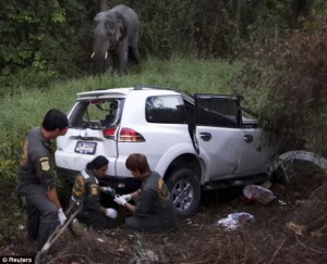 Rescue workers inspect the site where a vehicle crashed with an elephant at a roadside in Rayong province, east of Bangkok Read more: http://www.dailymail.co.uk/news/article-2579092/Six-people-ELEPHANT-killed-three-car-pile-Thailand.html#ixzz2vkeP4AbZ Follow us: @MailOnline on Twitter | DailyMail on Facebook