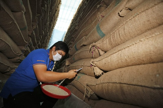 Thai Rice Ban in Iraq Lifted After 9 Months of Suspension
