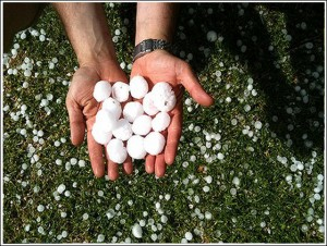Hail the size of golf balls pelted down in Chiang Rai