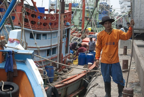 A migrant worker from Burma unloads fish and prawns in Mahachai, Thailand. (Feliz Solomon/DVB)