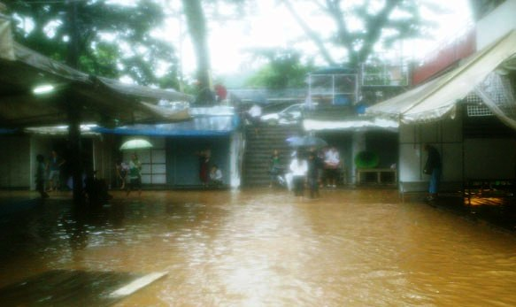 Floodwaters Subside in Chiang Rai's Mae Sai District, Market Reopen