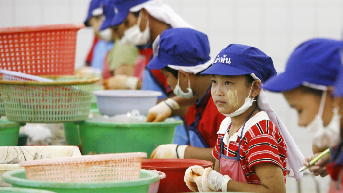 Tae (C), a 13-year-old girl from military-ruled Myanmar, peels shrimp at a factory in Samut Sakhon, nearly 40 km (25 miles) south of Bangkok