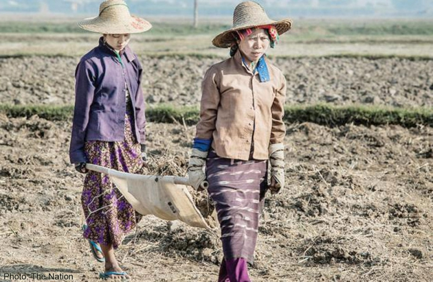 Migrant workers from Myanmar work in an agricultural field in Chiang Mai. - See more at: http://news.asiaone.com/news/asia/most-myanmar-migrants-thailand-want-go-home#sthash.w1g6Se9B.dpuf