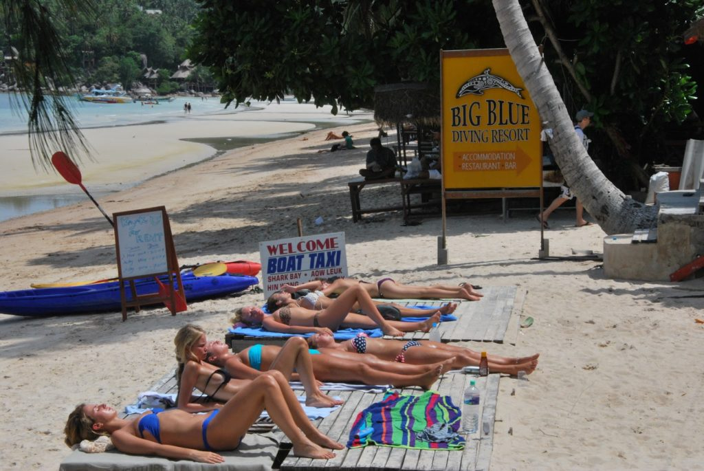 Foreign Women Sunbathing on the Island of Koh Tao