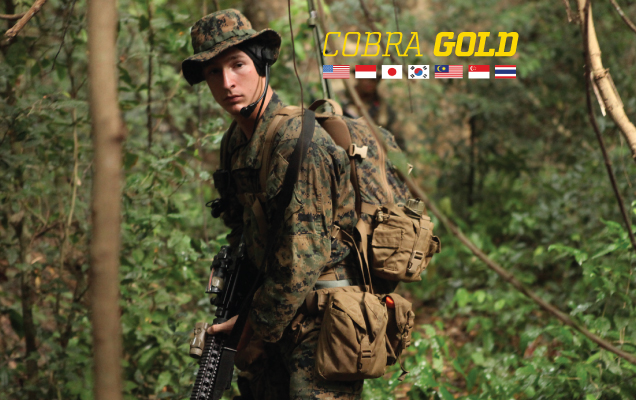 US Scales Back 'Cobra Gold' War Games in Thailand