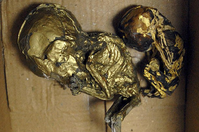 In 2012, Thai police found six foetuses covered in gold leaf as part of apparent black magic ritual