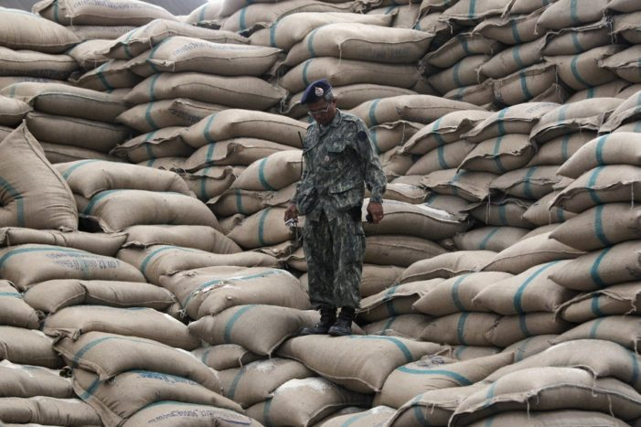 Markets, Not Governments Should Rule International Rice Prices