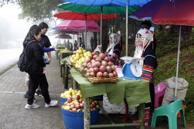 The Winter Colors of Doi Tung Mountain's Ethnic Bazaar