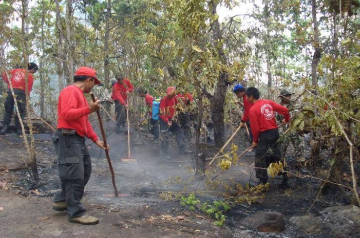 Army Bans Entry to Forest Zones to Prevent Slash and Burn Farming Activities