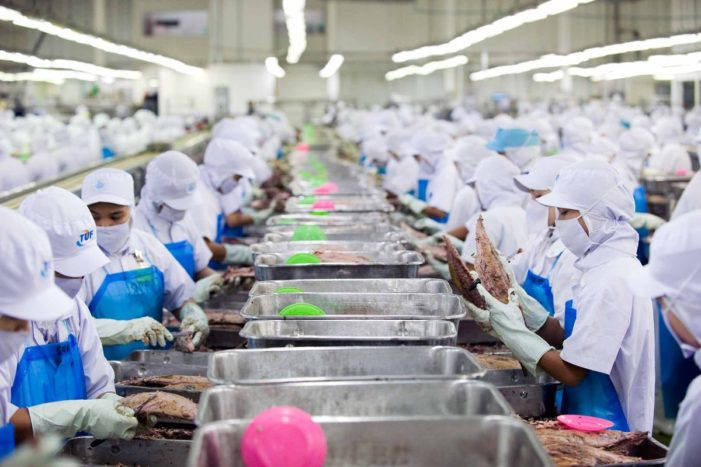 U.S. Pushes Thailand to Clean Up Tuna Industries Labour Practices