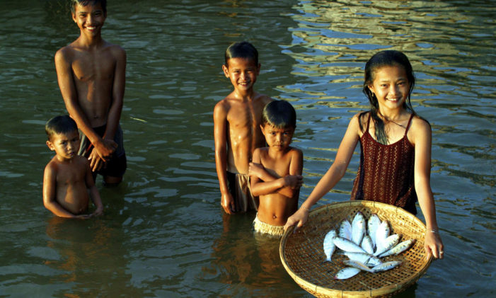 Damming the Mekong the Worlds Most Productive River, Food Security for Millions under Threat