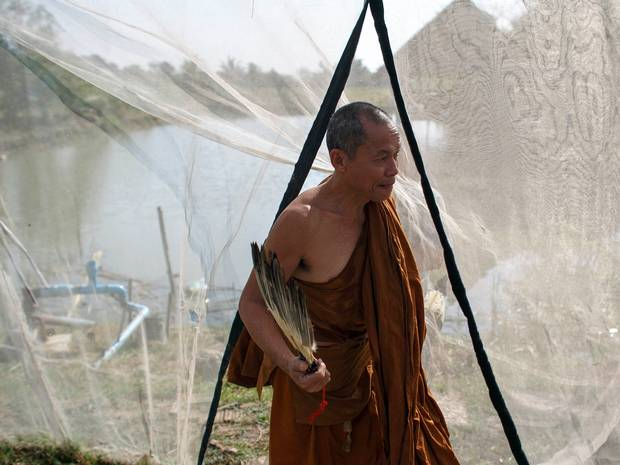 With Money, Corruption and Drugs, Phra Buddha Issara Fears Buddhism in Thailand is a 'Poisoned Fruit'