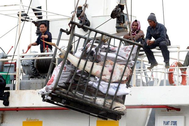 Thailand's Seafood Industry Tainted by Human Trafficking Report