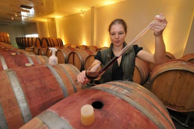 Kathrin Puff at work creating award-winning wines